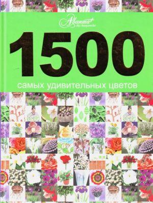 1500 samykh udivitelnykh tsvetov.