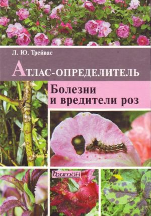 Bolezni i vrediteli roz