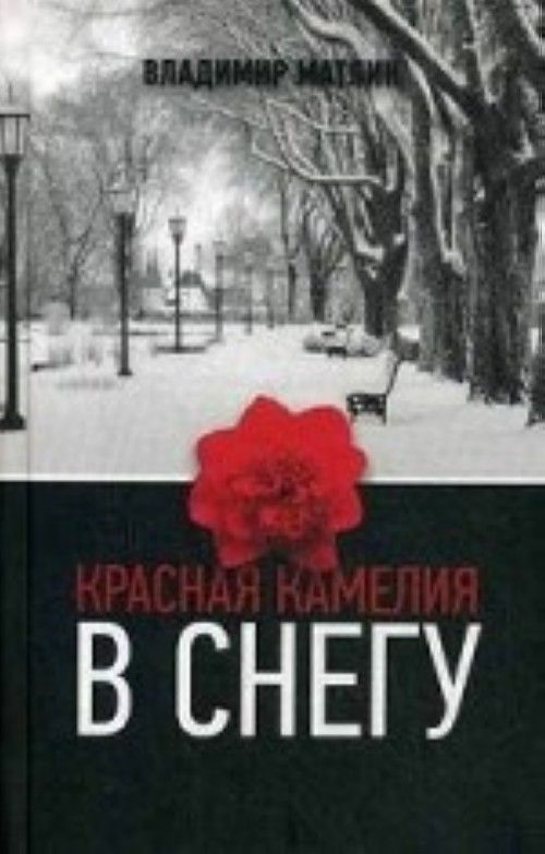 Красная камелия в снегу