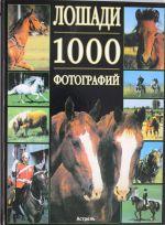 Лошади. 1000 фотографий.