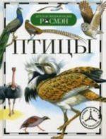 Птицы (ДЭР)