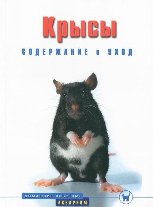 Подруге, картинки с надписями про людей крыс
