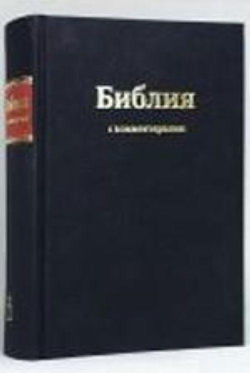 Biblija s kommentarijami. Knigi svjaschennogo pisanija Vetkhogo i Novogo Zaveta v Sinodalnom perevode s kommentarijami i prilozhenijami