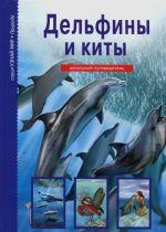 Delfiny i kity