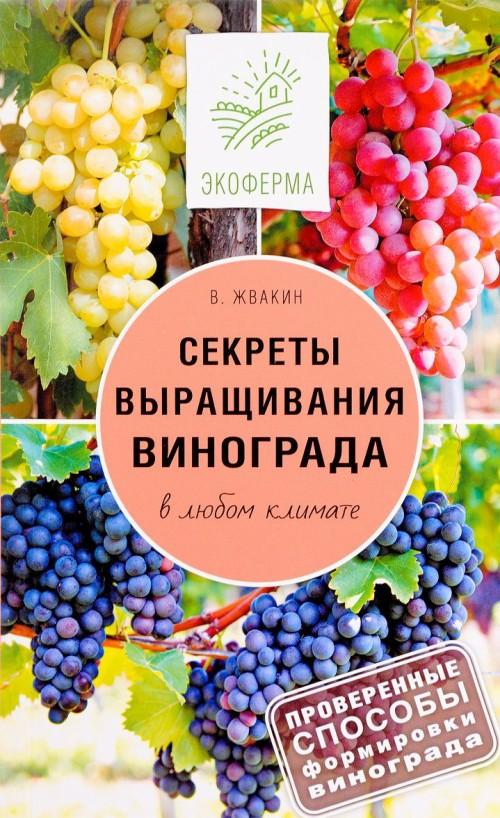 Sekrety vyraschivanija vinograda v ljubom klimate. Proverennye sposoby formirovki vinograda