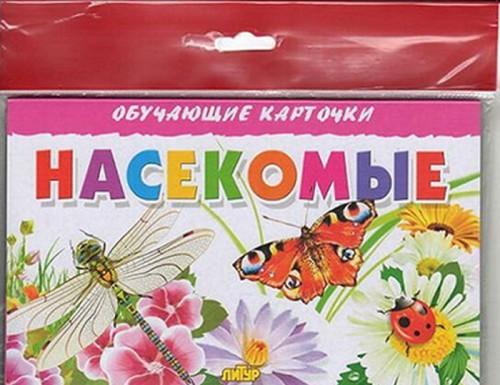Nasekomye (v evropakete)