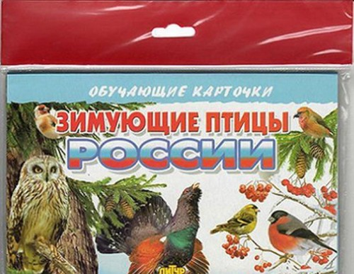 Zimujuschie ptitsy Rossii (v evropakete)