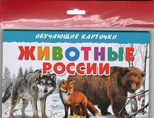 Zhivotnye Rossii (v evropakete)