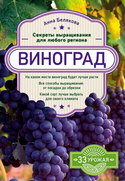 Vinograd. Sekrety vyraschivanija dlja ljubogo regiona