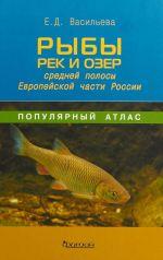 Ryby rek i ozer srednej polosy Evropejskoj chasti Rossii.Populjarnyj atlas (12+)