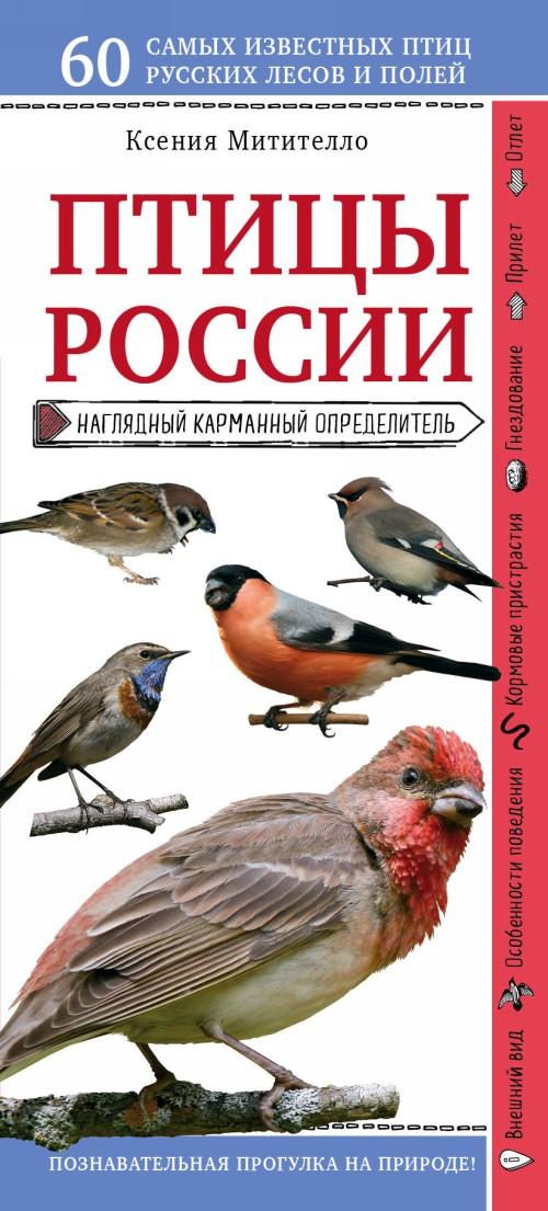 Ptitsy Rossii. Nagljadnyj karmannyj opredelitel