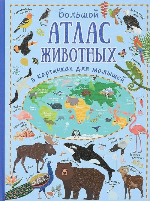 Bolshoj atlas zhivotnykh v kartinkakh dlja malyshej