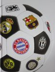 Vojna i mir v futbole. Kollektsionnoe izdanie [novoe oformlenie]