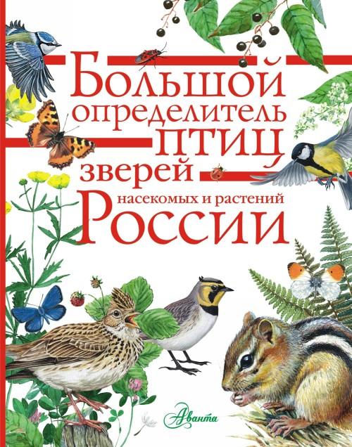 Bolshoj opredelitel zverej, amfibij, reptilij, ptits, nasekomykh i rastenij Rossii
