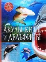 Akuly, kity i delfiny