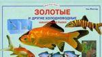 Zolotye i drugie kholodnovodnye akvariumnye rybki