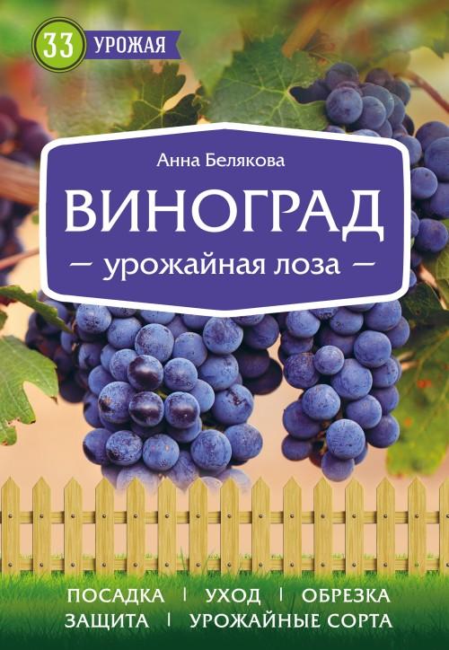 Vinograd. Urozhajnaja loza (nov.of)