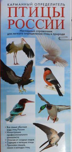 Ptitsy Rossii. Karmannyj opredelitel