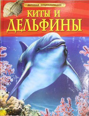 Kity i delfiny.