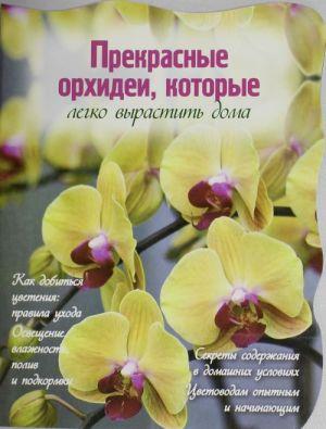 Prekrasnye orkhidei, kotorye legko vyrastit doma