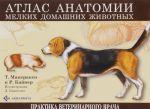 Atlas anatomii melkikh domashnikh zhivotnykh