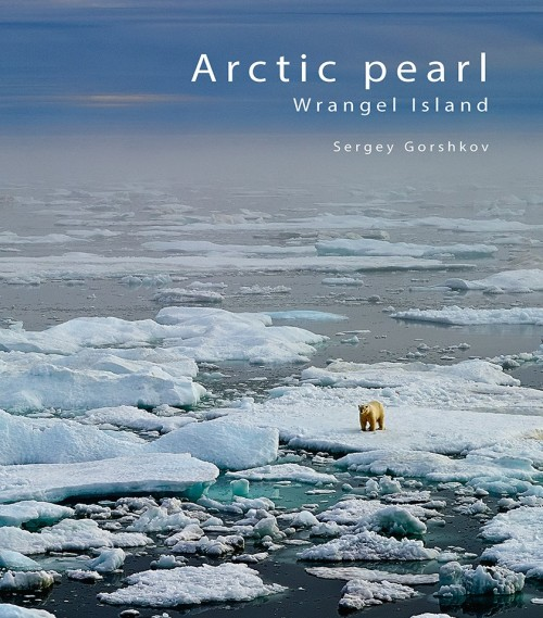 Arctic pearl Wrangel island