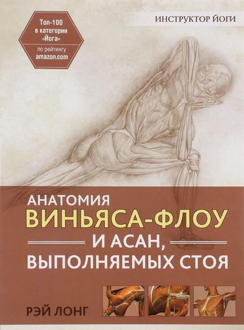 Anatomija vinjasa-flou i asan, vypolnjaemykh stoja