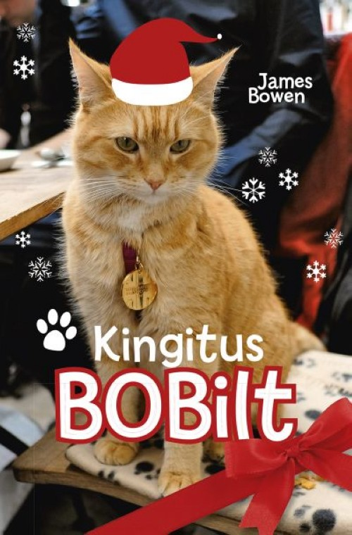 KINGITUS BOBILT
