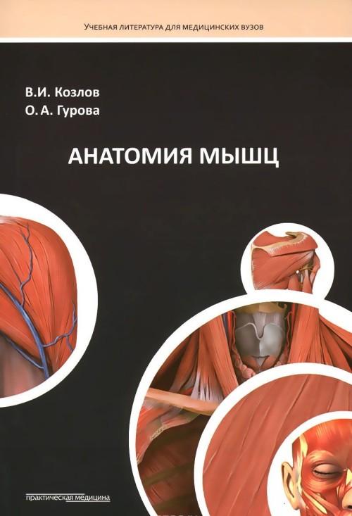 Anatomija myshts. Uchebnoe posobie
