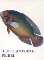 Ekzoticheskie ryby (nabor iz 15 otkrytok)