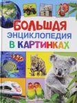 Bolshaja entsiklopedija v kartinkakh