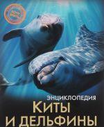 Entsiklopedija. Kity i delfiny