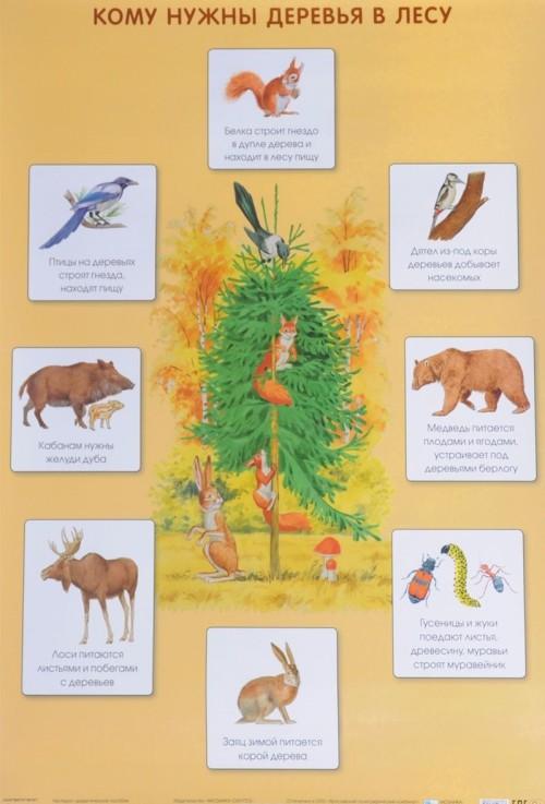 Komu nuzhny derevja v lesu. Plakat