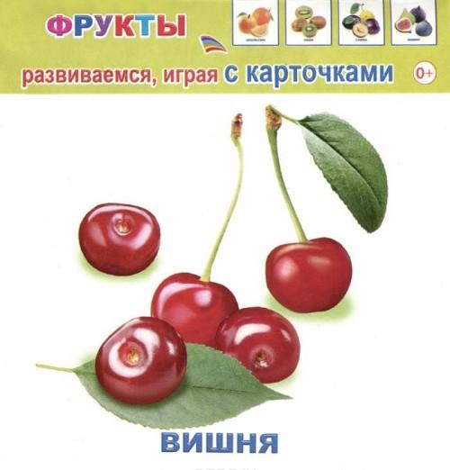 Frukty (nabor iz 12 kartochek)