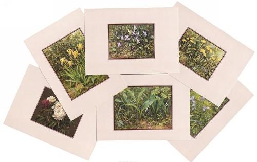 Tsvety. Vypusk 4 (nabor iz 15 otkrytok)
