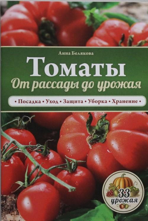 Tomaty. Ot rassady do urozhaja