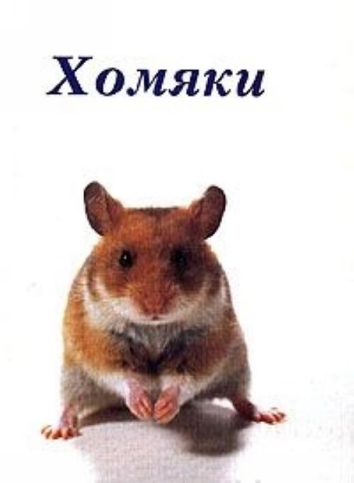 Khomjaki