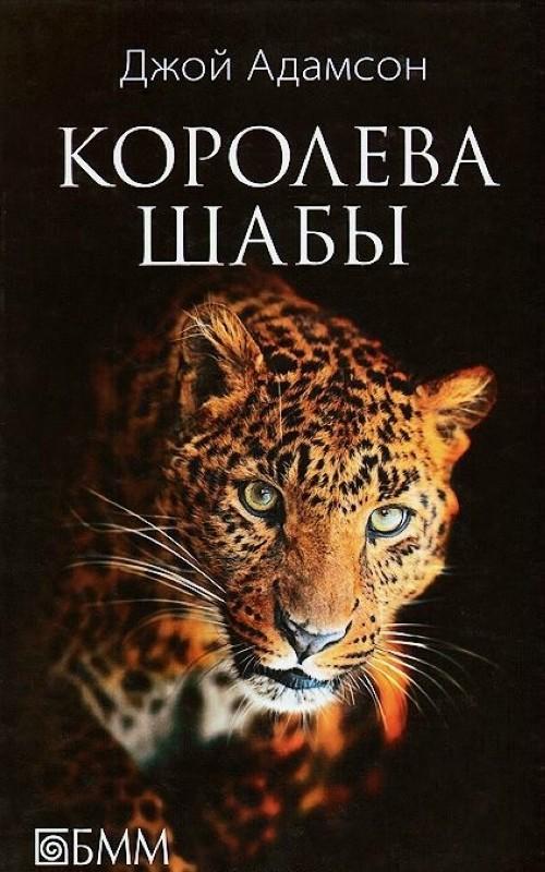 Koroleva Shaby