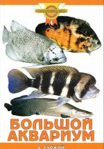 Bolshoj akvarium