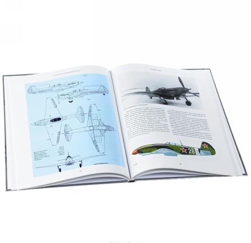 Znamenitye samolety VVS Rossii