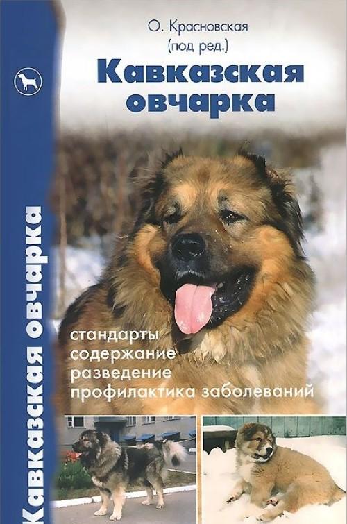 Кавказская овчарка. Стандарты, содержание, разведение, профилактика заболеваний