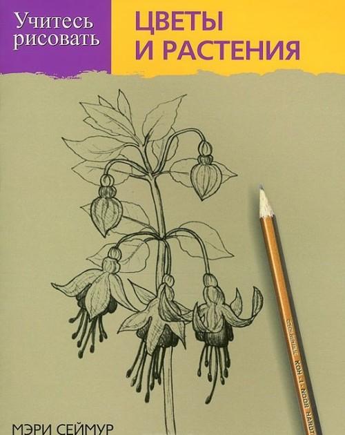 Uchites risovat tsvety i rastenija
