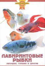 Labirintovye rybki. Petushki, gurami i drugie