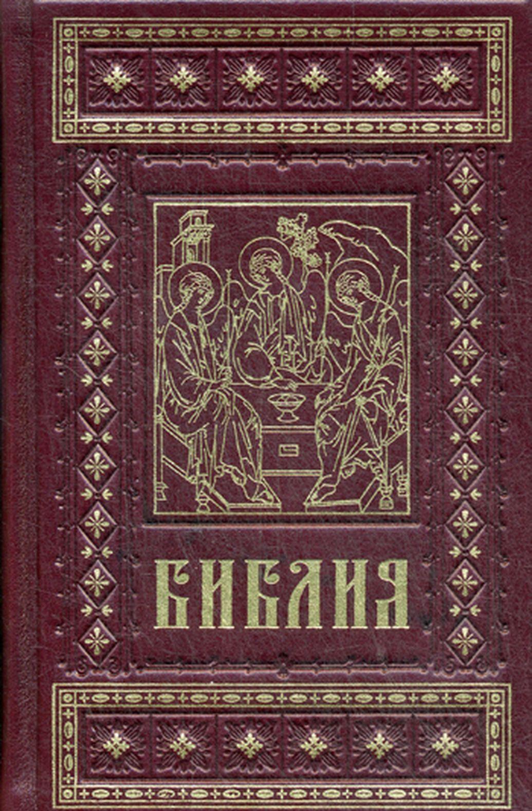 Biblija. Knigi Svjaschennogo Pisanija Vetkhogo i Novogo Zaveta (podarochnoe izdanie)