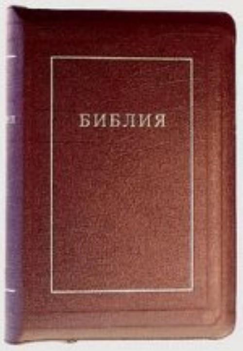 Biblija (1192)(kanon.kn.)077 Z vishnev.kozh.na molnii