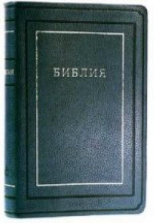 Biblija (1171)(kanonich) 075TI kozh.s zolot.sin.