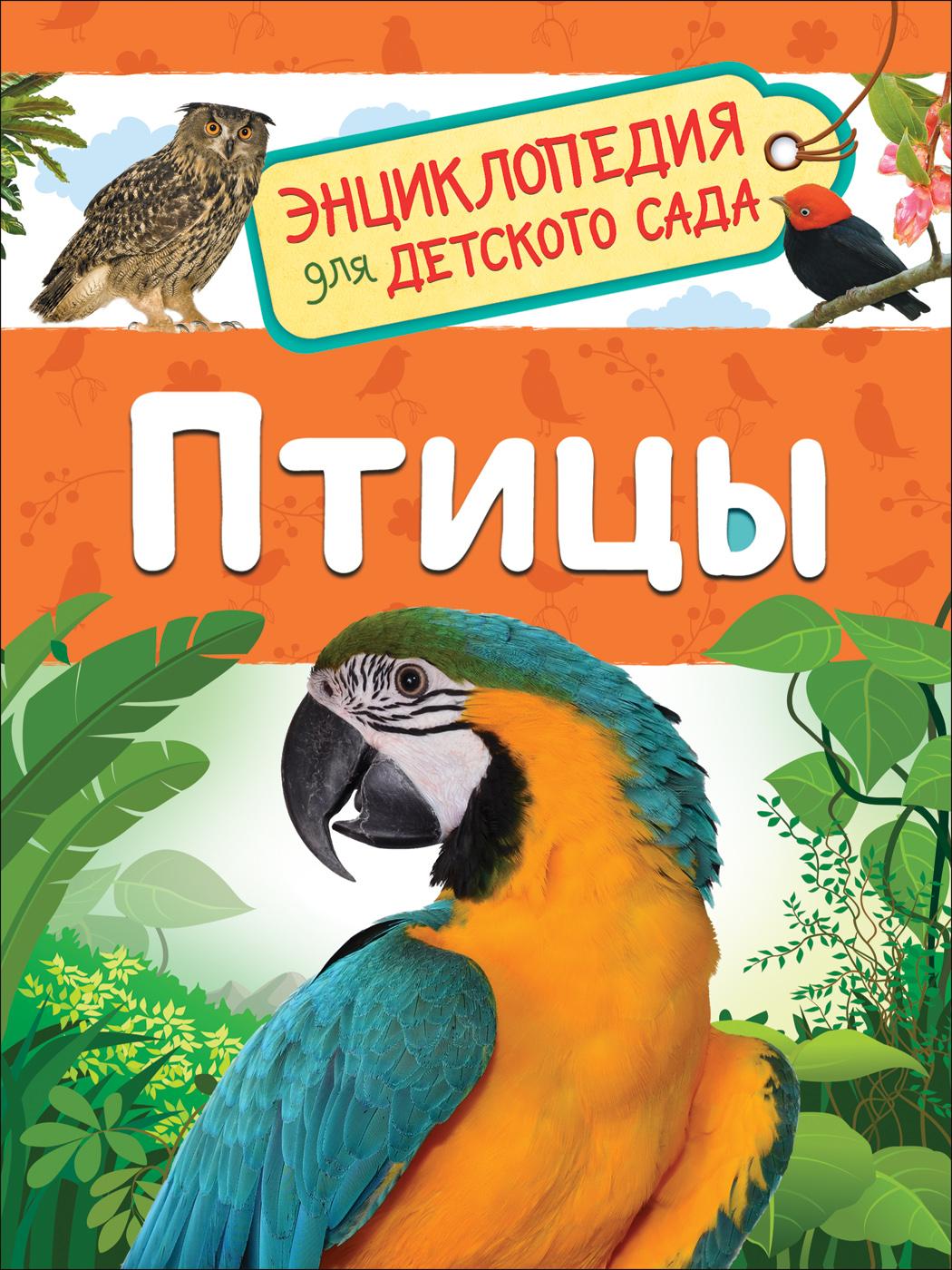 Galtseva S. N. Ptitsy (Entsiklopedija dlja detskogo sada)