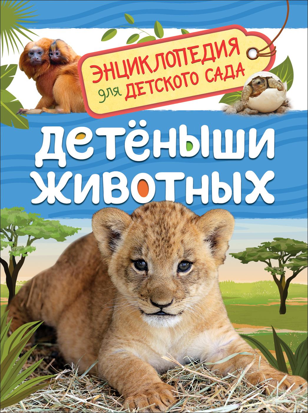 Kljushnik L. V. Detenyshi zhivotnykh (Entsiklopedija dlja detskogo sada)