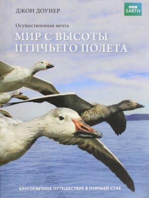 Mir s vysoty ptichego poleta