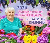Nastennyj lunnyj posevnoj kalendar 2020 ot Galiny Kizimy